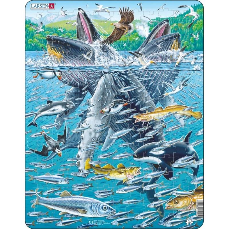 Larsen Пазл Горбатые киты в стае сельди 140 элементов